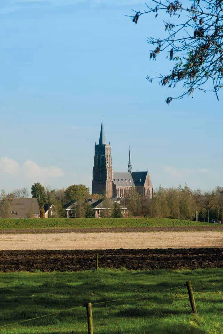 De kerk van Oud Gastel werd eeuwenlang bediend vanuit de Sint-Bernardsabdij. De toren dateert uit de vijftiende eeuw. foto uit besproken boek