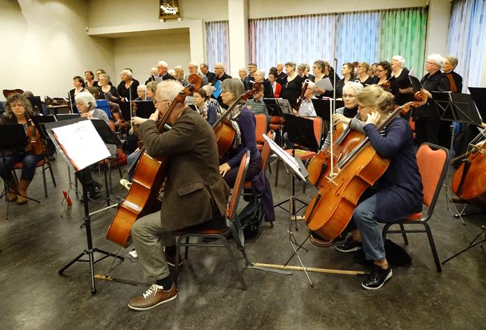 Het orkest . Foto Ad van Kessels